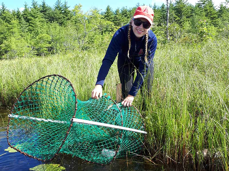 A student sets up a river net to collect specimens for study.